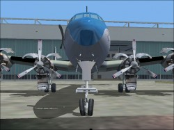 4073connie_front.jpg